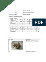 Data pengamatan perc. 6 indeks pengembangan.docx