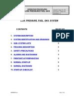 LP Fuel Gas System
