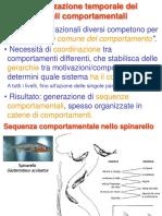 3. Organizzazione comp. e conflitti.pdf