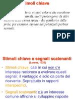 5. Comunicazione.pdf