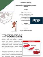 Histofisiologia de La Contraccion Muscular
