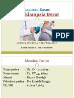 2. PEB - Lapsus.ppt