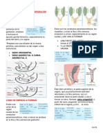 Ginecologia 2embriologia Del Aparato Reproductor Femenino