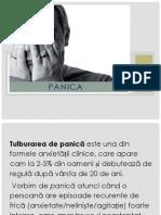 PANICA.pptx