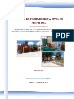 PIP MICELINO.pdf