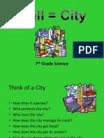 Cellcity Explanation