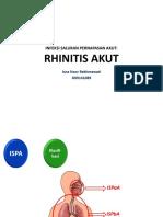 rhinitis Akut Print