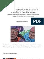 La Argumentación Intercultural de Los Derechos Humanos