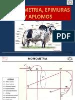 Morfometria y EPMURAS - Copia