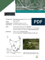 Pherosphaera-hookeriana-LS.pdf