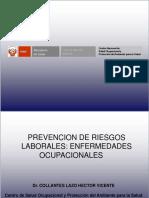 Prevencion de Riesgos Laborales Enfermedades Ocupacionales