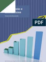 Orçamento e Indicadores.pdf