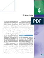 Adenal Gland