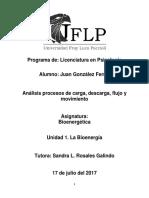 Análisis procesos de carga, descarga, flujo y movimiento.docx