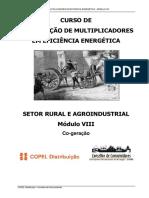 161526 Curso Coogeração.pdf