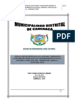 Perfil de Proyecto -Caminaca Socapaya