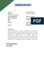 Curriculum Vitae Vergara Quezada Luis 2019