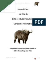 Cria de Bufalos