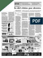 Trafico de organos.pdf