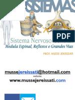 131_ANS_NAN_MEDULA_ESPINAL_NA.pdf