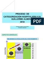 Proceso Categorizacion Hngai 2018
