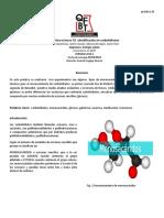Reporte 10 Biologia.docx - Documentos de Google