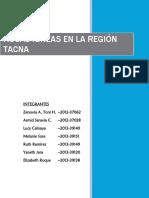 Rocas Ígneas en La Región Tacna