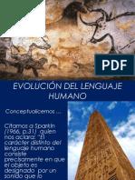Evoluci c3 93n 20del 20lenguaje 20humano 130516111519 Phpapp01