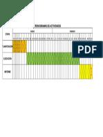 CRONOGRAMAS DE ACTIVIDADES.xlsx