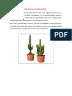 Texto Descriptivo de Una Planta