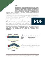 IV Lípidos y Membranas 2013
