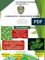 Cloroplastos Produccion de Energia