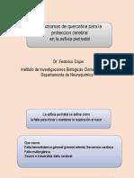 Nanosomas Quercetina SMU