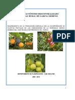 proyecto-plantas-frutales