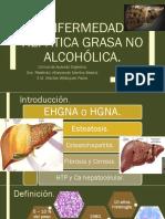 Enfermedad Hepática Grasa No Alcohólica[1] (1)