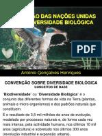 Convenção Sobre BioDiversiDade