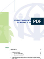 Produccion de Hortalizas en Bihuertos - 1