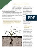 Condenation tree.pdf