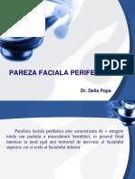 247734627-PAREZA-FACIALA-PERIFERICA.ppt