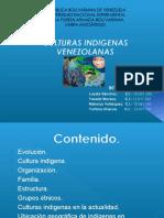 culturasindigenasdevenezuela-130419233346-phpapp02