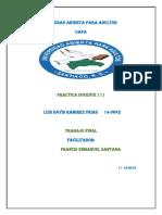 Trabajo Final de Practica Docente 111, Luis David Ramirez Frias