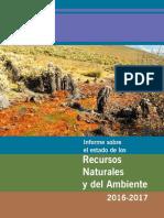 Informe Sobre El Estado de Los Recursos Naturales y Del Ambiente 2016 - 2017