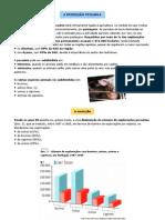 Produção pecuária (11º)