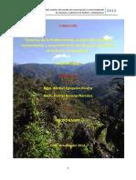 Análisis del estado de conservación de los bosques y páramos de Kañaris.pdf