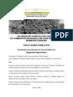 Valorização Agrícola de Cinza Da Co-combustão de Bagaço de Cana-De-Açúcar e Biomassa Lenhosa