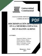 Memoria espacial y discriminación de formas en ratones alvinos