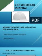 Cascos de Seguridad Industrial
