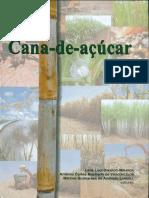 Cana_de_azucar Capa Livro IAC