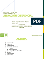 LIBERACION DIFERENCIAL-Jesus Miguel Ospino Mojica-2144102.pptx