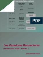 241474423-Litico.pdf